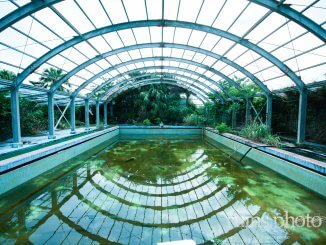 八丈温泉ホテル:プール